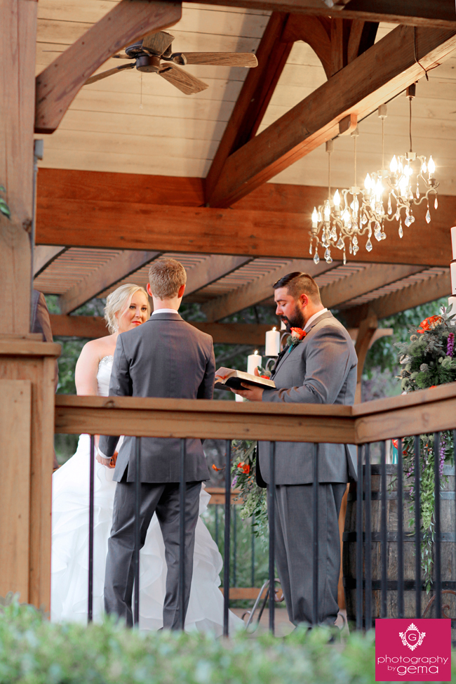 2014_centaur_wedding_2378-1