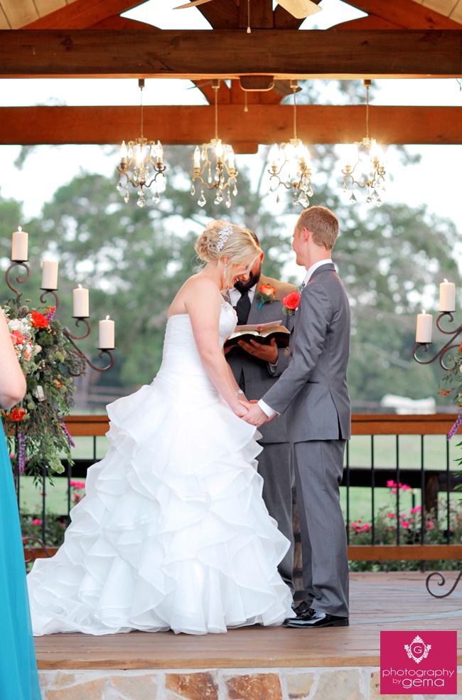 2014_centaur_wedding_2388-1